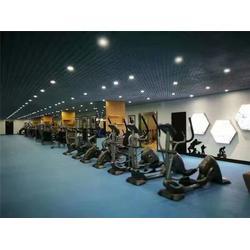 健身体育器材、海南体育器材、海南悦动体育工程图片