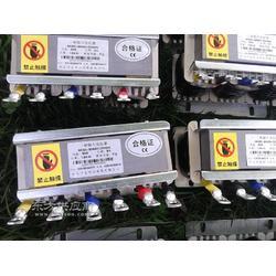 中弘厂家专业定制品质保证CKSG-189/10-6高压串联电抗器图片