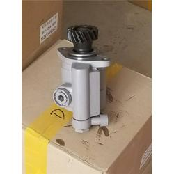 转向泵转向助力泵_济南大瑞(在线咨询)_淄博转向泵