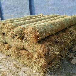 植草毯环保绿化-江苏植草毯(在线咨询)-植草毯图片