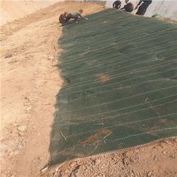 定制加工生态毯(图),滁州抗冲生态毯,生态毯图片