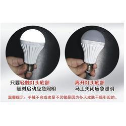 led应急灯,led应急灯专业生产厂家,莱亮科技1站式现货图片