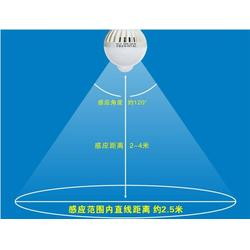 9W人体感应球泡灯、人体感应球泡灯、莱亮科技10年品牌图片