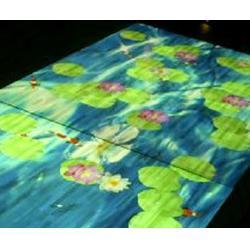 3D互动投影系统,3D互动投影,鸿光科技(查看)图片