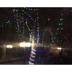 led挂树灯-长治led挂树灯-山西慧宇科技图片