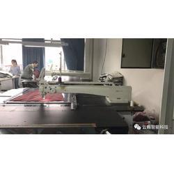 模板缝纫机-焦作缝纫机-云赐智能科技(查看)价格