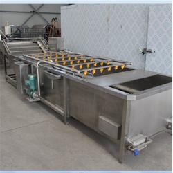 不锈钢清洗流水线、诸城鑫烨机械、洗果蔬不锈钢清洗流水线图片