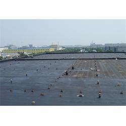 红牡丹防水(图)|工程堵漏施工|宁夏堵漏施工图片