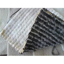 膨润土防水毯报价-晟瑞机毡厂(在线咨询)宜宾膨润土防水毯图片