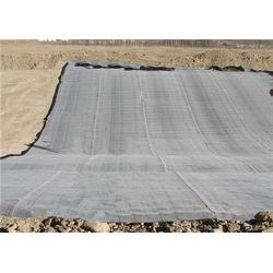 晟瑞机毡保证售后服务(多图)_膨润土防水毯生产厂家图片