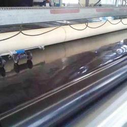 藕池防渗膜,甘肃藕池防渗膜,晟瑞机毡厂(查看)图片