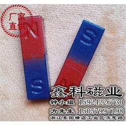 教育磁铁哪家好-鑫科磁业质量立足市场-义乌教育磁铁图片