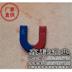供应教育磁铁,鑫科磁业您的放心之选,上海教育磁铁图片
