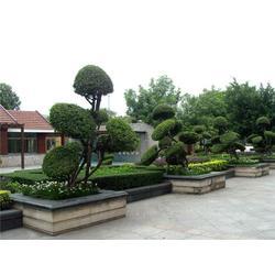 重庆景观|景观设计|南京巴山洛水(优质商家)图片