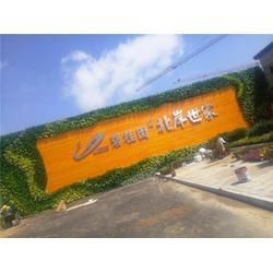 仿真绿植_南京艺无止境_酒店仿真绿绿植墙布置图片