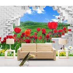 双喷头墙体彩绘机哪家好-华科恒润墙体彩绘机图片