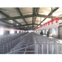 东莞养殖设备_养殖设备生产厂家_双联机械(优质商家)图片