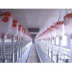 鹤壁养殖设备_自动化养殖设备厂家_双联机械(优质商家)图片