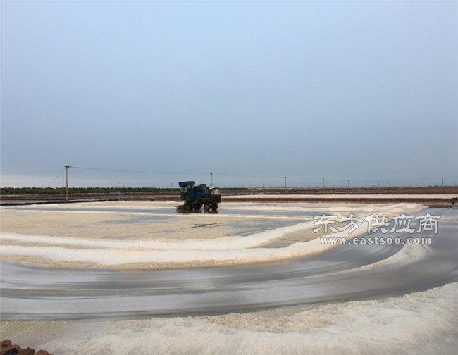 精致盐厂家,兆源实业,精致盐厂家信誉一直都是很高图片
