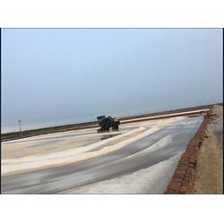 低钠盐厂家-低钠盐厂家选择我们肯定没错-兆源实业图片