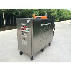 家用蒸汽洗车机|山南地区蒸汽洗车机|尚铸机械图片