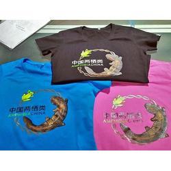 炫美服饰(图)、企业广告衫生产厂家、玉溪企业广告衫图片