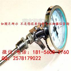 wssx-413b双金属温度计是什么意思图片