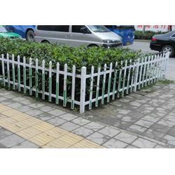 绿化带围栏多少钱-扬州绿化带围栏-安平县领辰(查看)图片