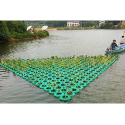 哈尔滨水生植物浮岛-大荆河聚格塑料制品厂图片