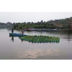 北京水生植物浮岛-荆河聚格塑料制品厂图片