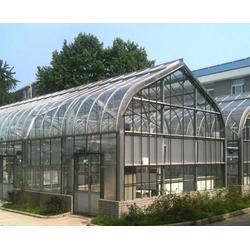 安徽大棚,合肥小农人大棚,玻璃大棚图片