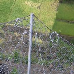 主动边坡防护网供应厂家_恒全._池州边坡防护网图片