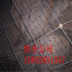 高速防护网厂家_湘西防护网_主动防护网多少钱一米图片