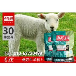 羔羊爱吃的饲料预混料图片