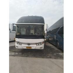 【四通长途客运】-郑州到烟台的客车费用多少-郑州到烟台的客车图片