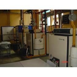 德地氏低氮锅炉代理商,德地氏低氮锅炉,【大地供暖】(多图)图片