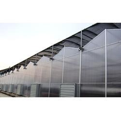 保温大棚、齐鑫温室园艺、保温大棚建设图片