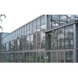 齐鑫温室园艺小唐(多图),玻璃大棚造价,玻璃大棚图片