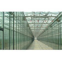 齐鑫温室园艺小唐,尖顶玻璃连栋温室,长安区玻璃连栋温室图片