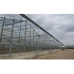 全钢化真空玻璃的优势,全钢化真空玻璃,齐鑫温室园艺小唐图片
