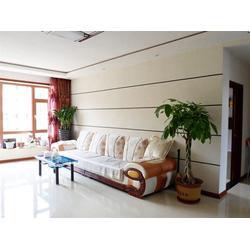 沙发背景墙硅藻泥、氧川硅藻泥(在线咨询)、日照背景墙硅藻泥图片