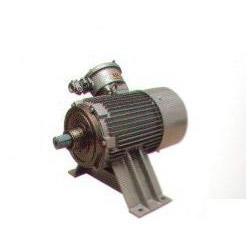 高压电动机绝缘测试、大中电机、高压电动机图片
