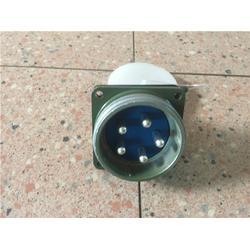 六芯扁插头-插头-无锡逸凯矿冶设备制造图片