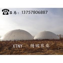 北京鸟巢温室、鸟巢温室造价、绣田农业(优质商家)图片