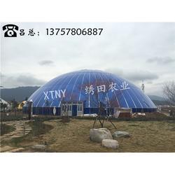 球形鸟巢温室|绣田农业(在线咨询)|湖南鸟巢温室图片