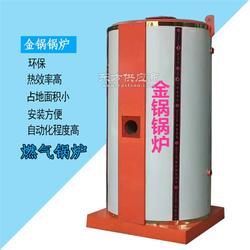 供应小型燃气蒸汽锅炉 升温快 出汽足图片
