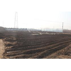 山药专用有机肥|有机肥|日照茂源有机肥(多图)图片