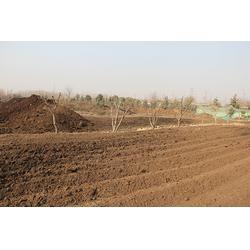 复混肥料美高梅娱乐,沂南复混肥料,日照茂源有机肥(图)图片