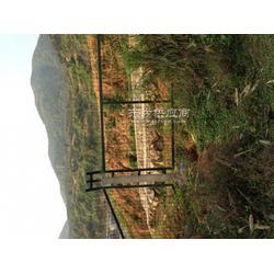 桥上桥下防护网图片