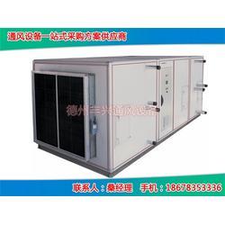 丰兴质量上乘_多联空调机组_多联空调机组生产商图片